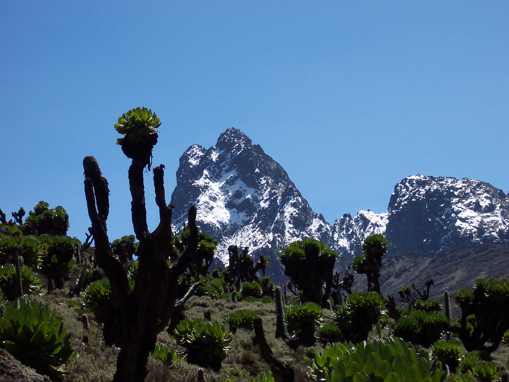 Mt. Kenya Circuit